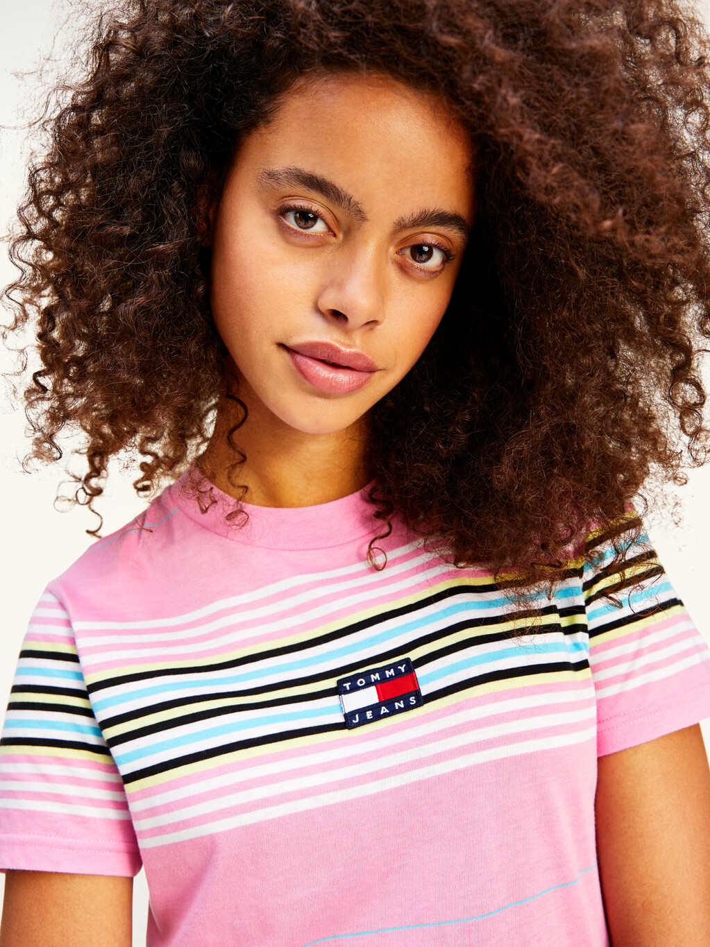 Tommy Badge All-Over Stripe T-Shirt