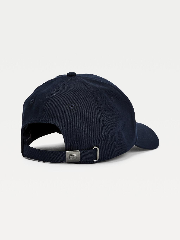 TH Established Organic Cotton Baseball Cap